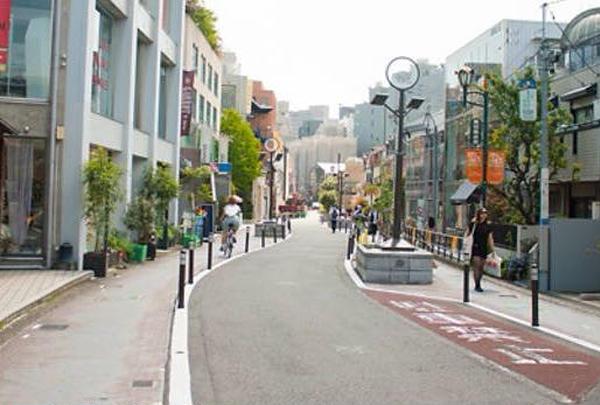 キャットストリートの写真・動画_image_201473