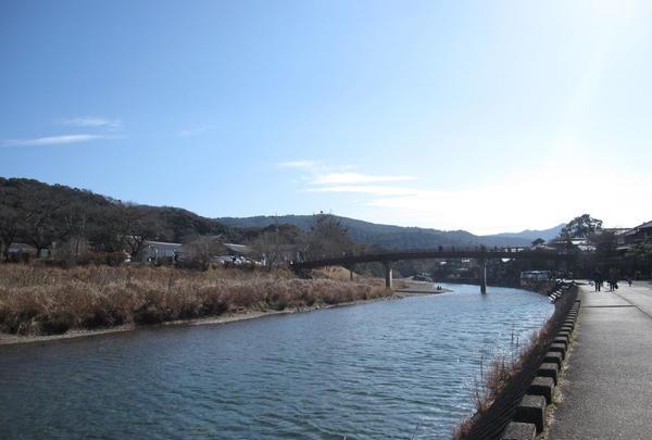 五十鈴川の写真・動画_image_224042
