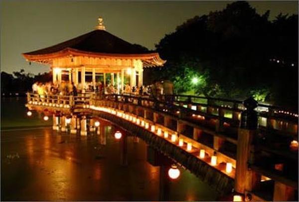 奈良公園 浮見堂の写真・動画_image_224980