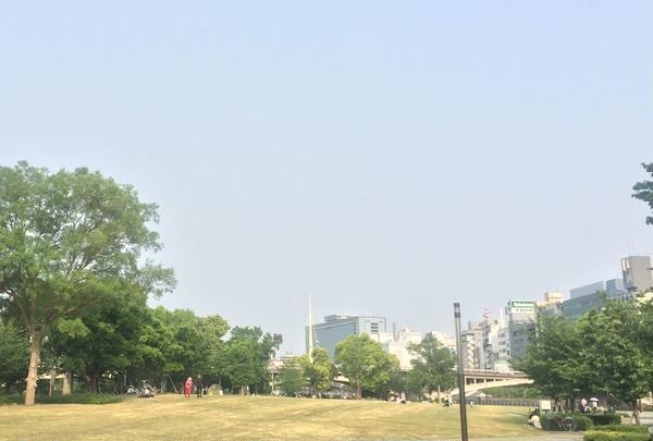 中之島公園の写真・動画_image_237999