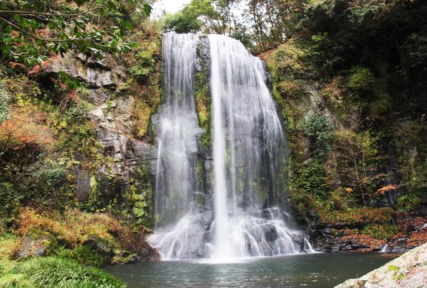 ゆうすい自然の森(旧 遊水峡キャンプ場)の写真・動画_image_239797
