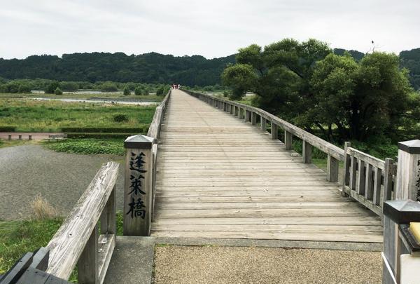蓬莱橋の写真・動画_image_253841