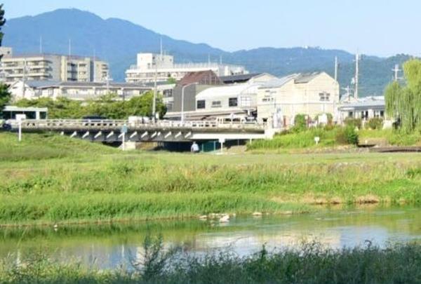 鴨川の写真・動画_image_269746