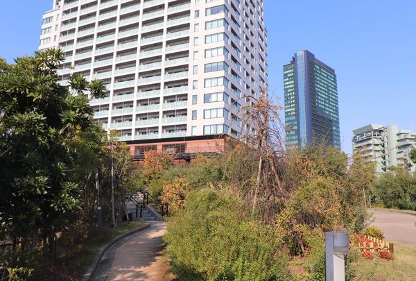 目黒天空庭園の写真・動画_image_278277