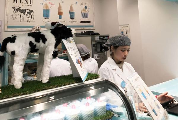 生クリーム専門店 ミルク 新宿ルミネ店の写真・動画_image_287102