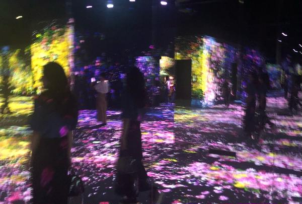 〔台場周辺〕デジタルアート ミュージアム(MORI Building Digital Art Museum: EPSON teamLab Borderless)