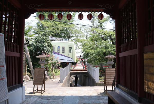 山名八幡宮の写真・動画_image_408246