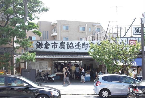 鎌倉市農協連即売所の写真・動画_image_424178