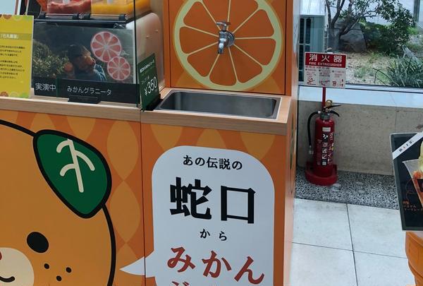 松山空港の写真・動画_image_434046