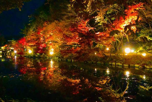 神勝禅寺 紅葉ライトアップ特別拝観