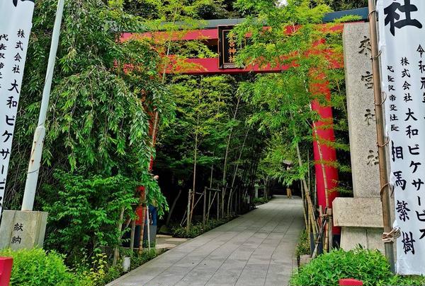 來宮神社の写真・動画_image_612344