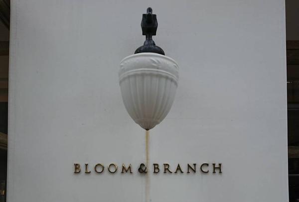 BLOOM&BRANCH