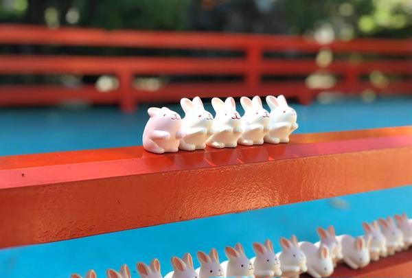 岡崎神社の写真・動画_image_650897