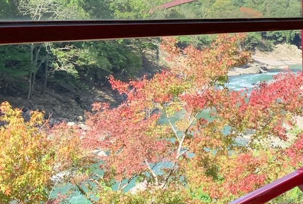 嵯峨野トロッコ列車の写真・動画_image_674940