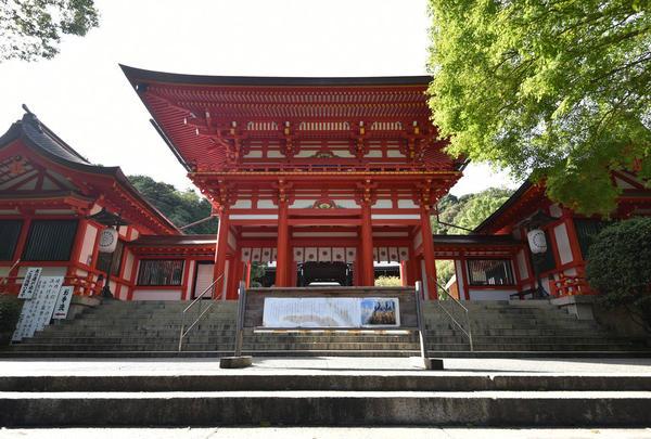 近江神宮の写真・動画_image_720700