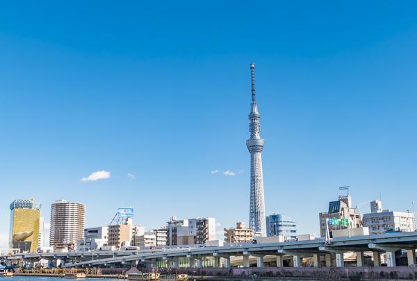 東京スカイツリーの写真・動画_image_767019