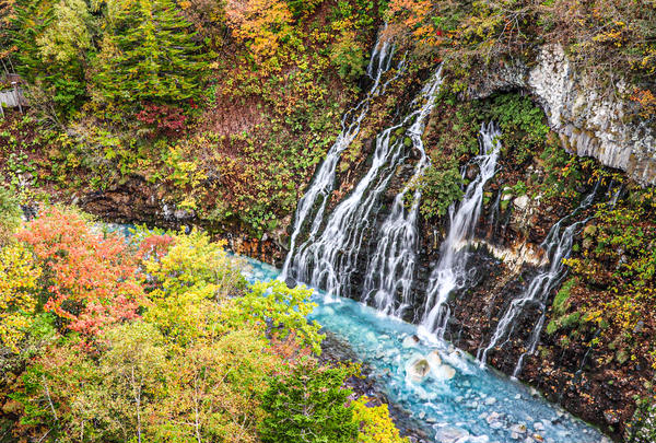 白ひげの滝の写真・動画_image_815563