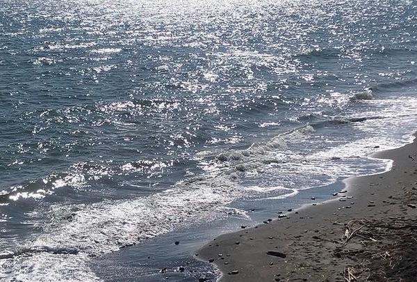 七里ケ浜の写真・動画_image_889652