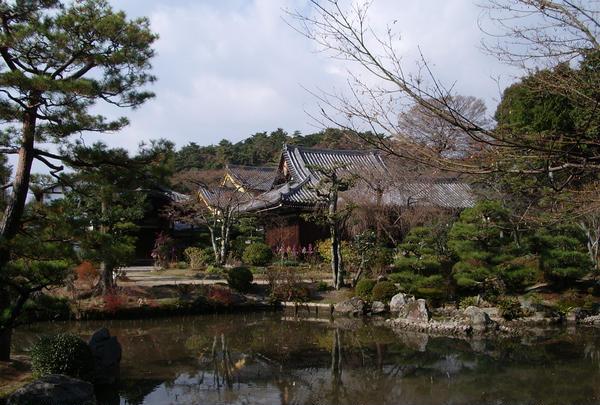 花の寺①「五位山 法金剛院」