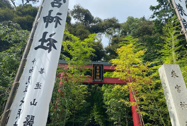 來宮神社の写真・動画_image_909493
