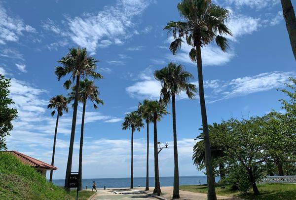 片添ヶ浜海浜公園