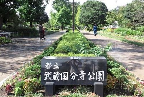しってる?東京周辺の公園🌳🌷