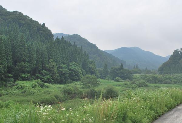 中津ダムの写真・動画_image_139217