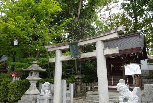 八坂神社の写真・動画_image_356406