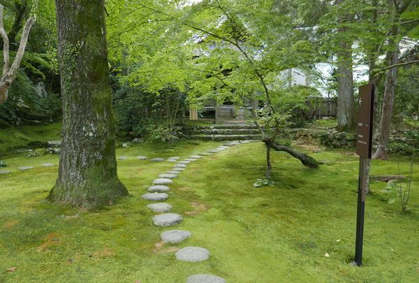 庭園が整備されています