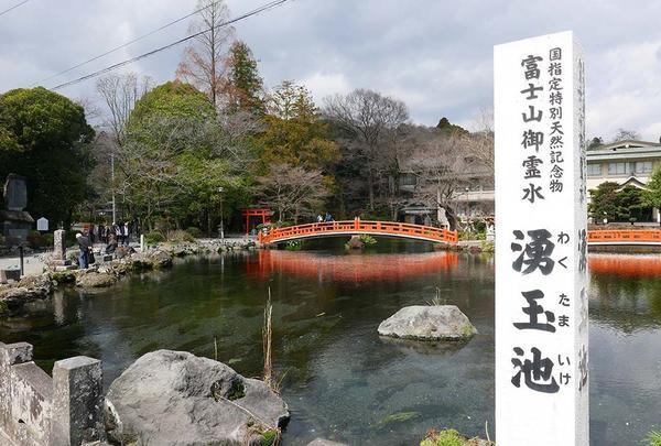 国指定天然記念物 湧玉池