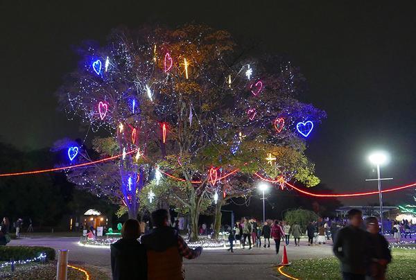 ピカピカ光るハートツリー