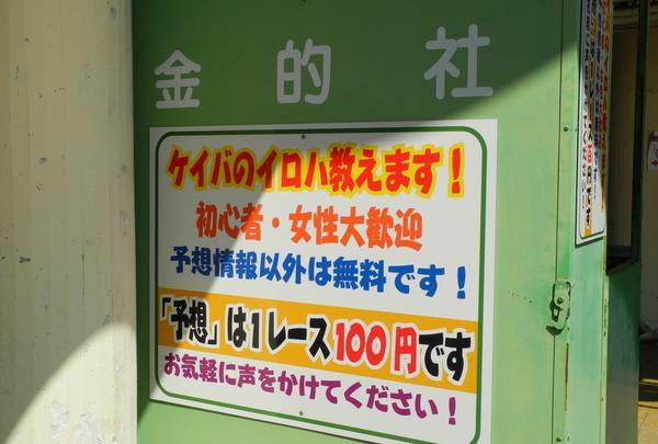 笠松競馬場の写真・動画_image_24709