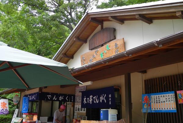 岐阜公園の写真・動画_image_27019