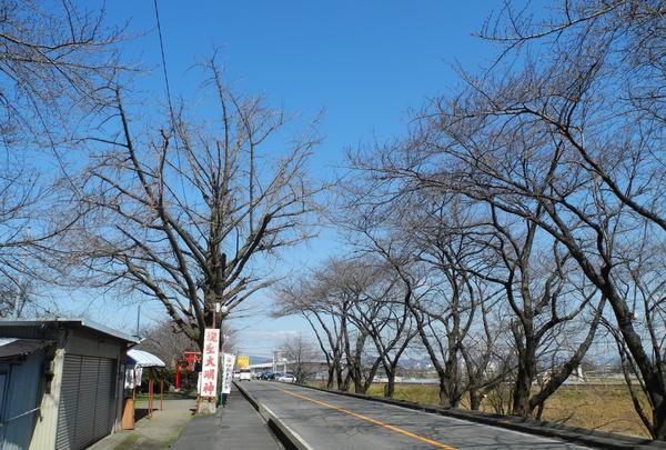 木曽川堤防道路