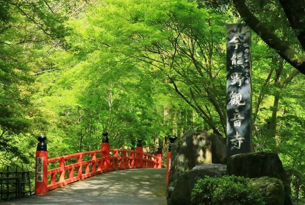 今熊野観音寺の写真・動画_image_313427