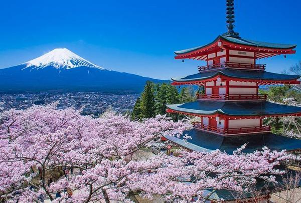 新倉山浅間公園·忠霊塔