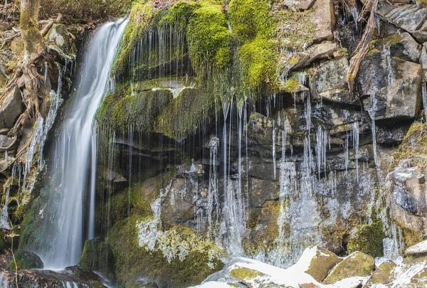 たまだれの滝の写真・動画_image_462918