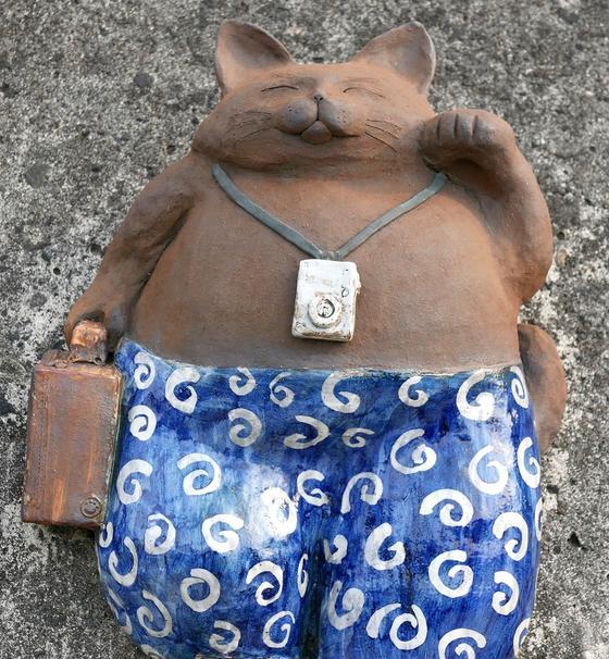 旅行スタイルの猫