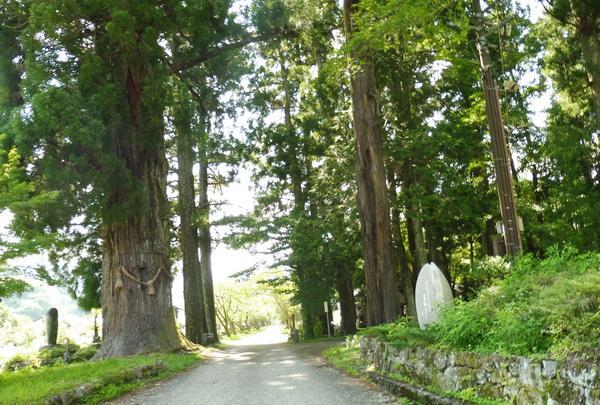 明建神社の参道