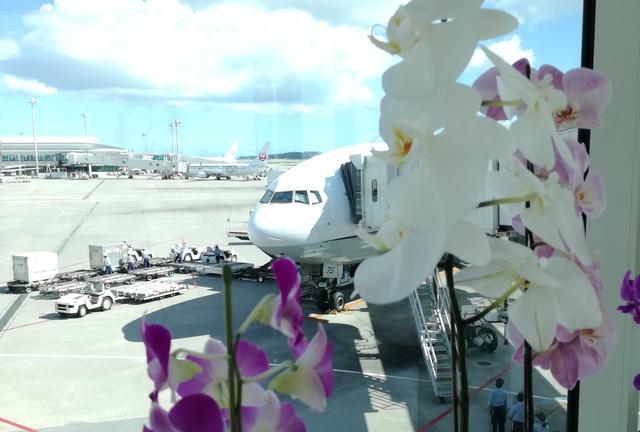 1泊で癒し旅♡週末沖縄堪能プラン。