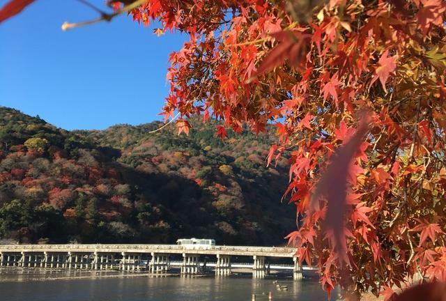 決定版!1泊2日で京都の紅葉を楽しむプラン