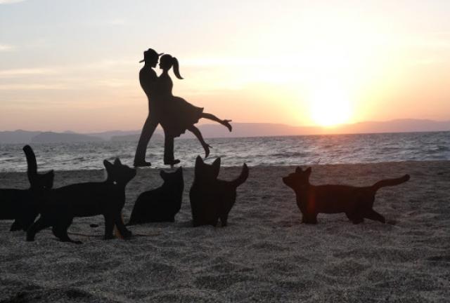 縁結びの旅 💓大隅半島ロマンチック紀行