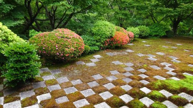 京都、東福寺PART2 心癒される苔の庭へ…!