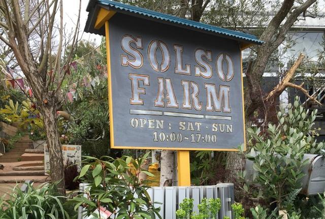 土日限定!多肉の楽園SOLSO FARMへ行こう!