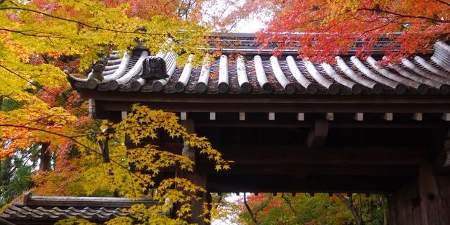 秋の京都を大満喫しよう[京都1泊2日♡]