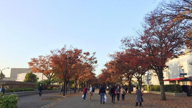 秋の渋谷🍁ゆったりショッピング