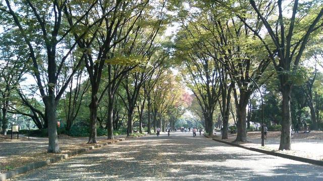駒澤大学前駅周辺で芸能人が過ごす休日