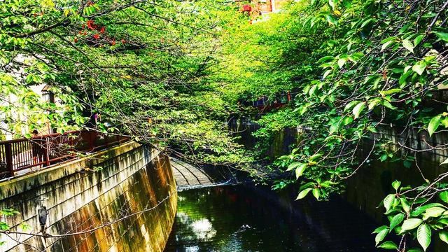 池尻・中目黒ほっこりお散歩
