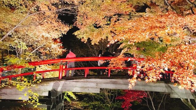 紅葉に癒される温泉の旅🍁♨️