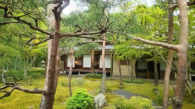 鎌倉大人の遠足